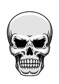 stock photo of ghoul  - Gray human skull on white background for halloween - JPG
