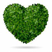 Foliage Heart