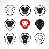 Vector Group Of An Lion Head Design On White Background
