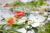 Florist Working Process. Conceptual Photo.