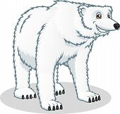 High Quality Polar Bear Vector Cartoon Illustration