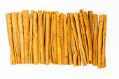 Cinnamon background ~ the inner bark of trees used forboth sweet and savoury foods