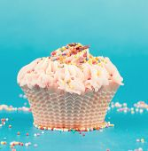 Cupcake With Pink Cream On A Blue Background Close Up