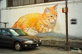 Malaysia, Penang, Georgetown - Circa Jul 2014: A Car Passes A Beautiful Mural Of An Orange Tabby Cat
