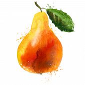 pear logo design template. fruit or food icon.
