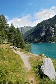 Trail By The Alpine Lake