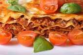 stock photo of lasagna  - Lasagna with fresh basil and cherry tomatoes macro horizontal on a white plate - JPG