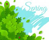 Spring design with green leaves. Spring concept.