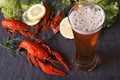 image of crawfish  - beer with crawfish close - JPG