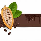 picture of cocoa beans  - the background with cocoa beans and chocolate - JPG