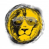 stock photo of lions-head  - Lion head with sun glasses - JPG