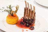 foto of lamb chops  - Roasted Lamb Chops - JPG