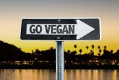 stock photo of vegan  - Go Vegan direction sign with sunset background - JPG