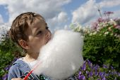 picture of candy cotton  - Boy eating cotton candy in the park - JPG