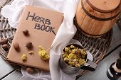 stock photo of roughage  - Dried herb with nutmeg and book on table close up - JPG