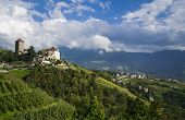 pic of south tyrol  - views of the castle and vineyards in Merano - JPG