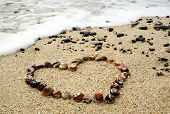 Heart from shells