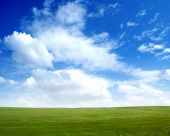 Foto van groene veld en de blauwe hemel