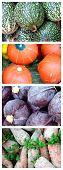 Fresh Vegetables (Dry Brush Artistic)