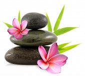 Pebbles and frangipani flowers
