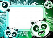 High detailed panda frame