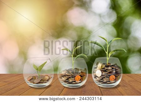 poster of Saving Money Concept. Coins In Glass Jar. Investment Money Concept. Growing Money, Finance And Inves