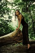 Nature And Fashion. Fashion Model With Glamour Look, Summer Vacation. Woman In Fashionable Dress Pos poster