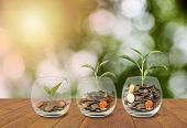 Saving Money Concept. Coins In Glass Jar. Investment Money Concept. Growing Money, Finance And Inves poster