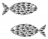 Fish Pair Vector Composition Composed From Randomized Fish Icons In Various Sizes. Fish Icons Are Or poster