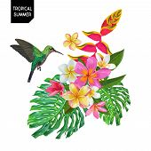 Summer Tropical Design With Hummingbird And Exotic Flowers. Floral Background With Tropic Bird, Plum poster