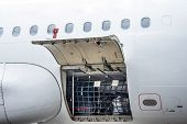 Luggage Compartment And Cargo Section In The Airplane Open On Inspection, With Bags And Luggage Of P poster