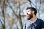Man With Beard And Mustache On Calm Face, Branches On Background, Defocused. Relaxation Concept. Man poster