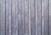 Surface Of Old Weathered Wood Weathered Gray Abandoned Grunge Foundation Board Natural Background poster
