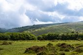 A View Of The Moor Land Of Dartmoor National Park, Devon, United Kingdom poster