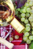 Wine and green grape
