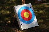 Archery Target On A Field. Archery Target. poster