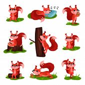 Set Of Cartoon Squirrel Character In Different Actions. Sleeping, Climbing Up Tree Trunk, Eating Ice poster