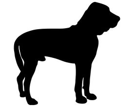 pic of bloodhound  - Detailed and colorful illustration of bloodhound Silhouette - JPG