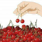 Choose Cherries