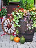 Feast Of Harvest