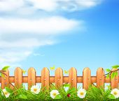 picture of arrowhead  - Spring background - JPG