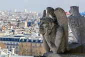 picture of gargoyles  - Paris wit Gargoyle architectural fragment in foreground - JPG