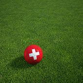 3D-Rendering von einem Schweizer Soccerball lying on grass