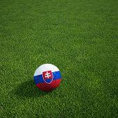 3D Darstellung einer slowakischen Soccerball lying on grass