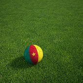 3D-Rendering ein kamerunischer Soccerball lying on grass
