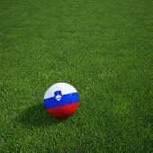 3D-Rendering eine slowenische Soccerball lying on grass