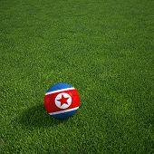 3D-Rendering einer nordkoreanischen Soccerball lying on grass