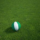 3D Darstellung einer nigerianischen Soccerball lying on grass