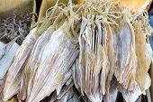 Sun Dried Cuttlefish