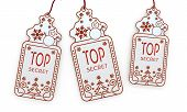 Isolated Christmas Labels With Top Secret Sign